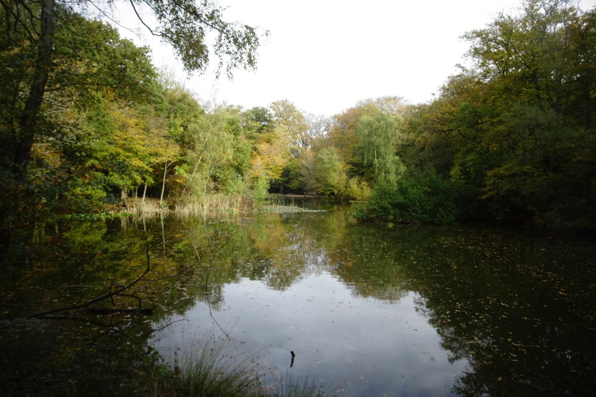 Wet wet wet - weather review of October 2020
