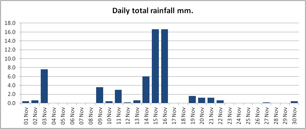 Graph showing daily rainfall for November 2020