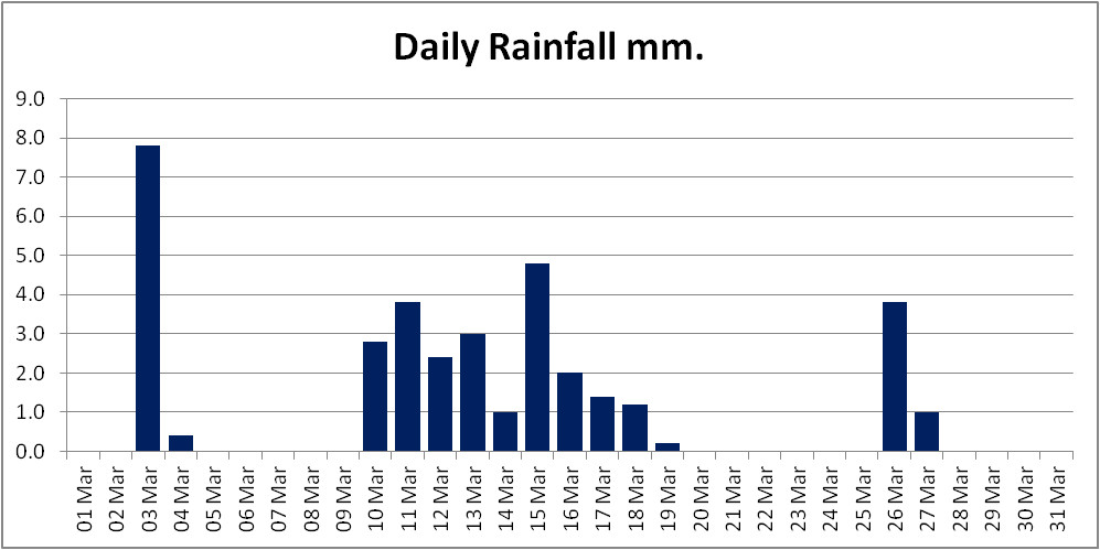 A column chart showing daily rainfall totals for March 2021