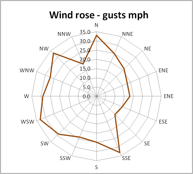 A wind rose diagram showing the maximum gusts for each compass segment during March 2021